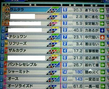 23_20100228161346.jpg