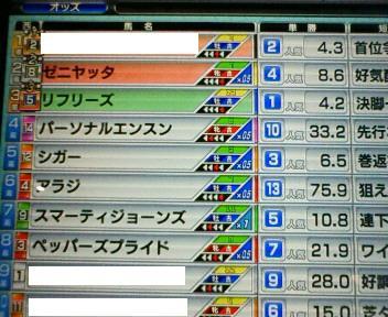 25_20100227154556.jpg