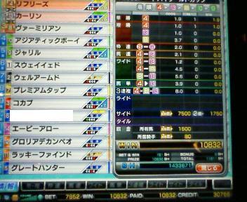 29_20100306212557.jpg