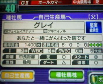 2_20100213164425.jpg