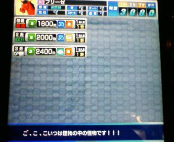 2_20100313003118.jpg
