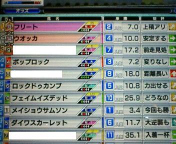 31_20100206175841.jpg