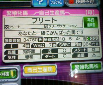 3_20100214155653.jpg