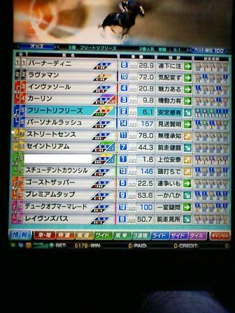5_20100322113756.jpg