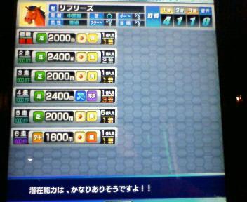 6_20100213164449.jpg