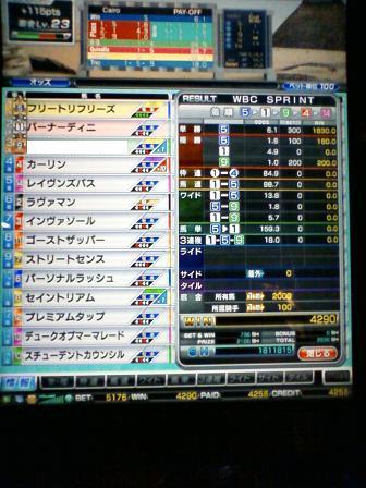 7_20100322113848.jpg