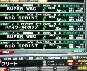 8_20100131174853.jpg