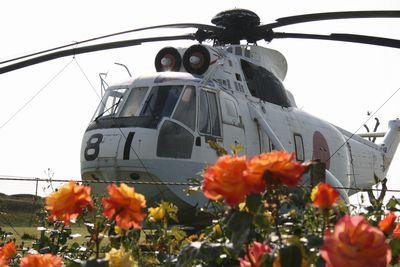 薔薇とヘリコプター