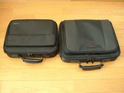左:BAG-CL1 右:BAG-PR1