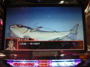 DSCN0389.jpg