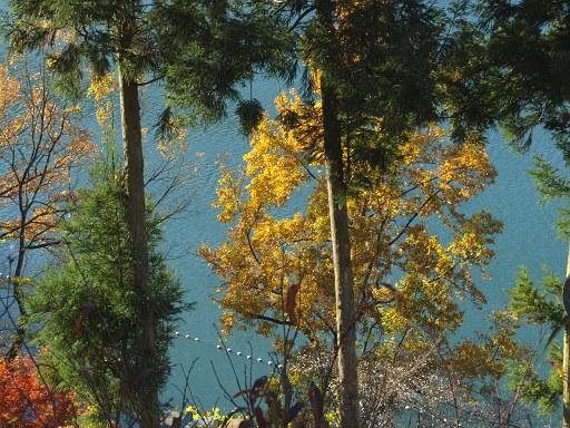 水と色と秋と
