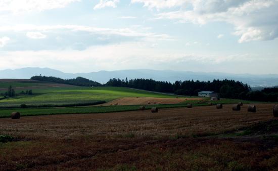 北海道夏2010-7