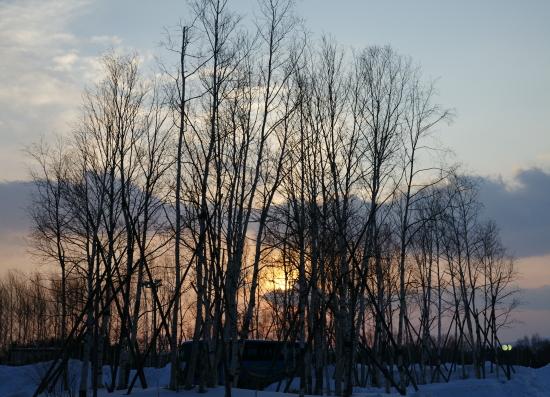 北海道冬2010-1