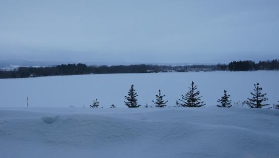 北海道冬2010-6