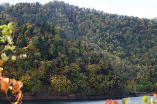 北海道紅葉2009-1