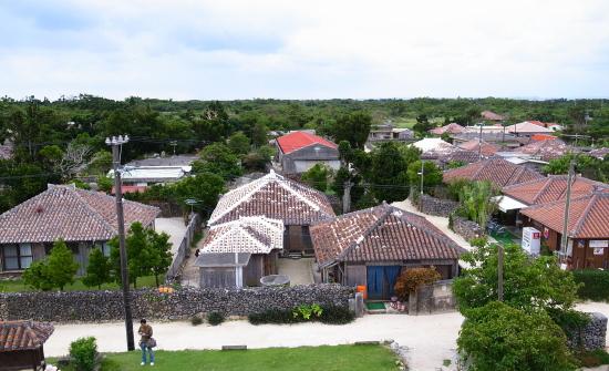 石垣2009-8