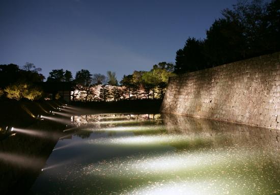 京都桜2009-2