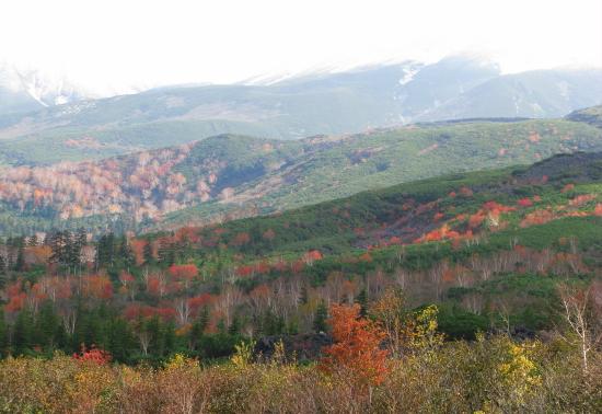 北海道紅葉2008-10