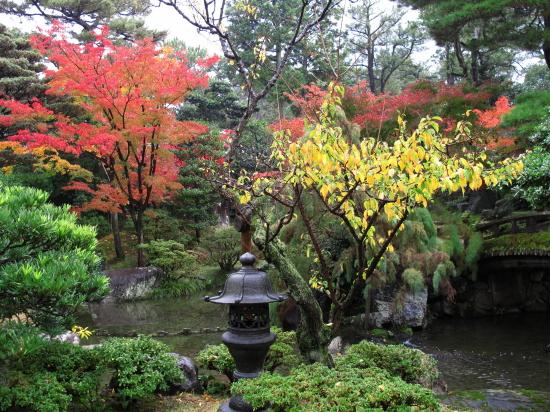 京都紅葉2008-5