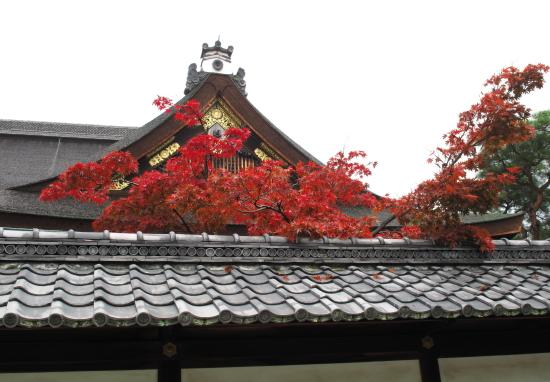 京都紅葉2008-4