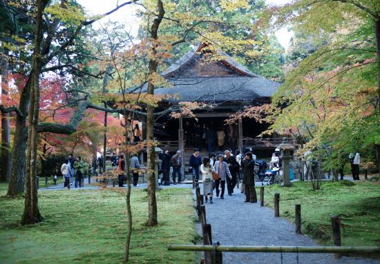 京都紅葉2008-10