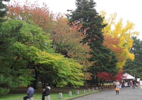 京都紅葉2008-7