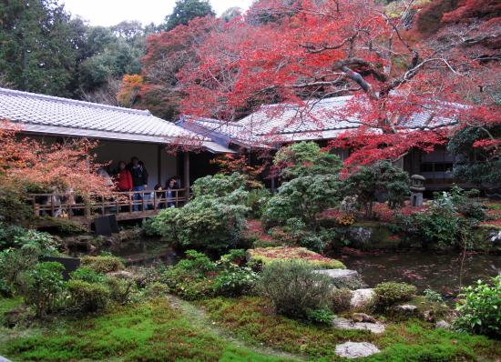 京都紅葉2008-16