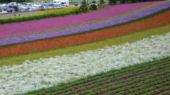 北海道夏2007-2