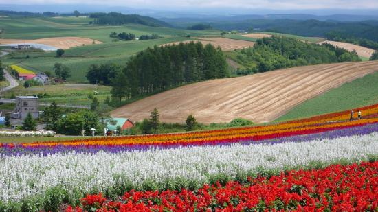 北海道夏2007-9
