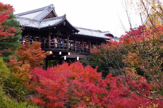 京都紅葉2006-10
