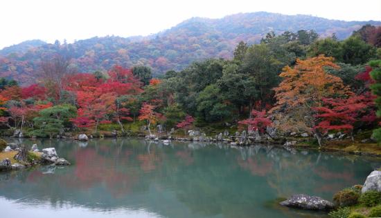 京都紅葉2006-8