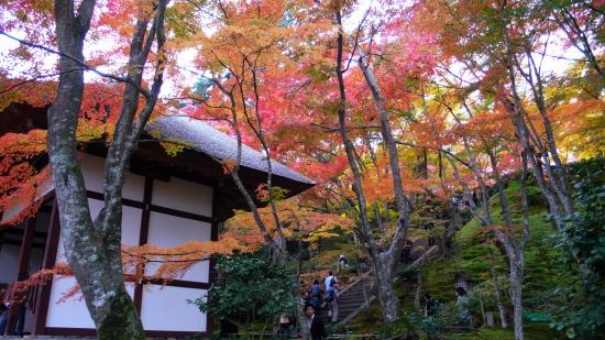 京都紅葉2006-6