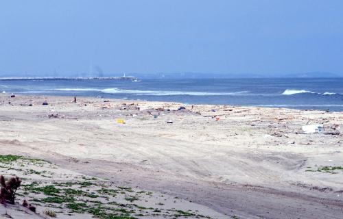 仙台砂浜  (3)