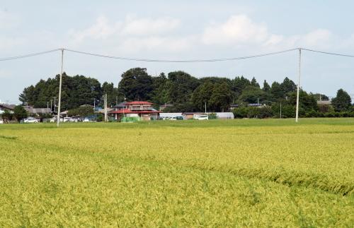 長喜城 (3)