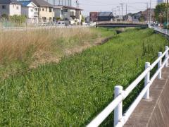 2009-05-01_Photo2