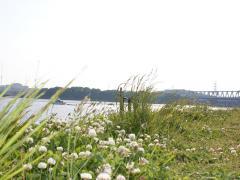 2009-05-01_Photo6