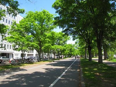 IMG_3548-hokudai.jpg