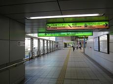 IMG_5185-0.jpg