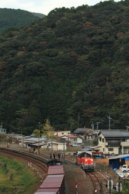 20111122.jpg