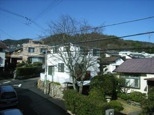 suzu22.jpg