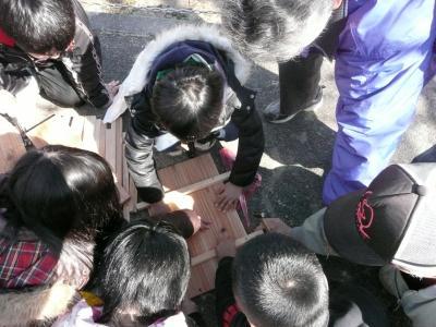 日本ミツバチの巣箱作り?