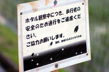 nisimura.jpg