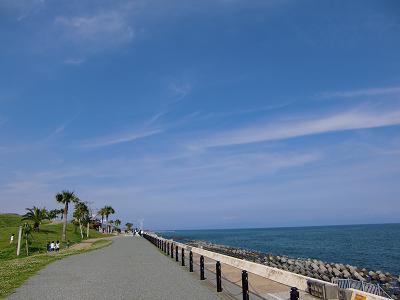 hawaii風2