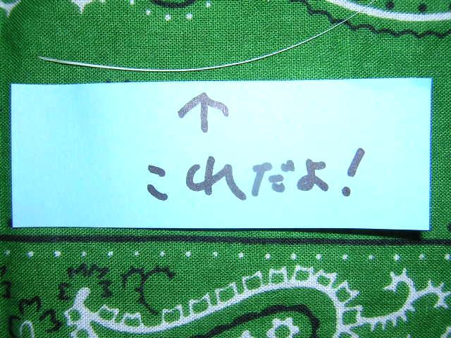 2010_0318_171202-DSCN8917.jpg