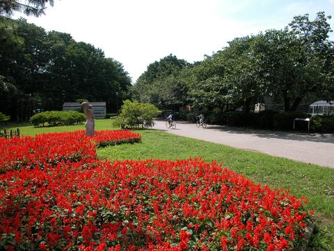 052砧公園2
