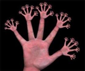 hand_fractal.jpg