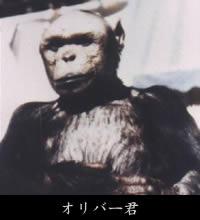 oliver_kun.jpeg