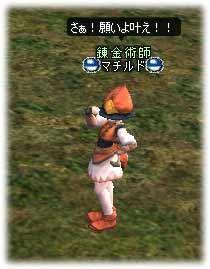 2005012503.jpg