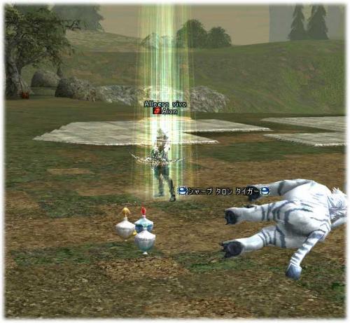 2006120202.jpg