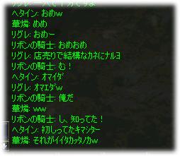 2006123113.jpg